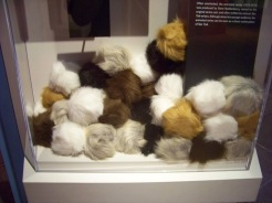 All the tribbles!